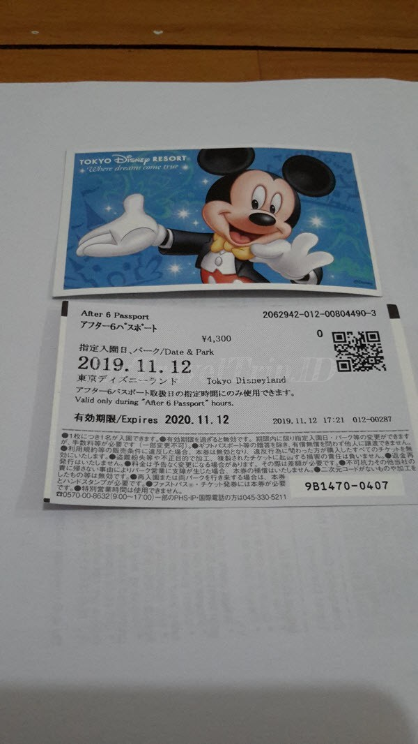 Tiket Disneyland Jepang Halfday