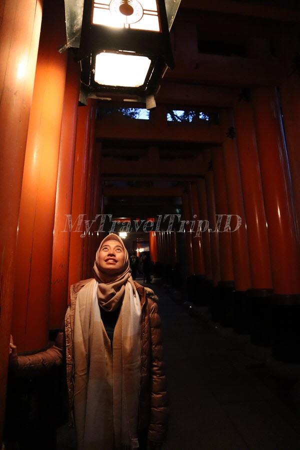 Torii, Fushimi Inari Shrine
