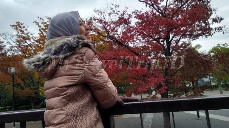Hari Kedua di Jepang: Shibuya, Yoyogi, Harajuku