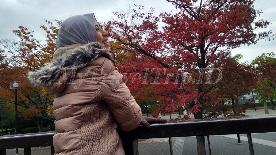 Menikmati Musim Semi di Yoyogi Park