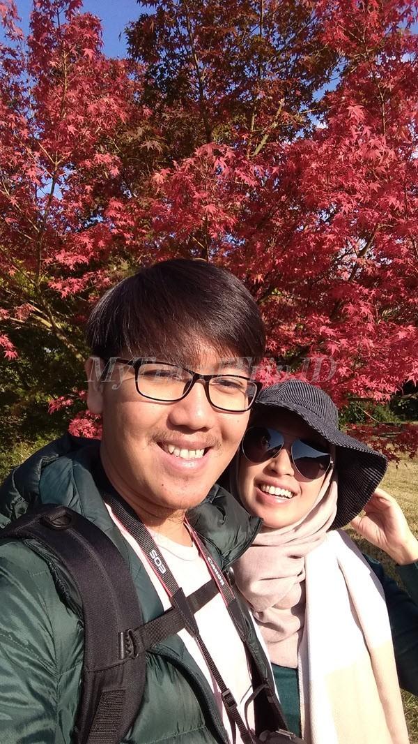 Pohon Momiji di Arashiyama
